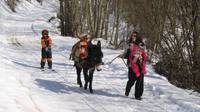 ski joerring